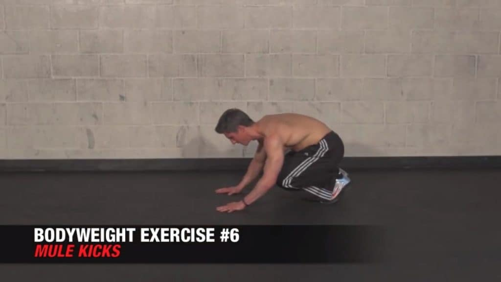 the mule kick is among the best bodyweight exercises for men